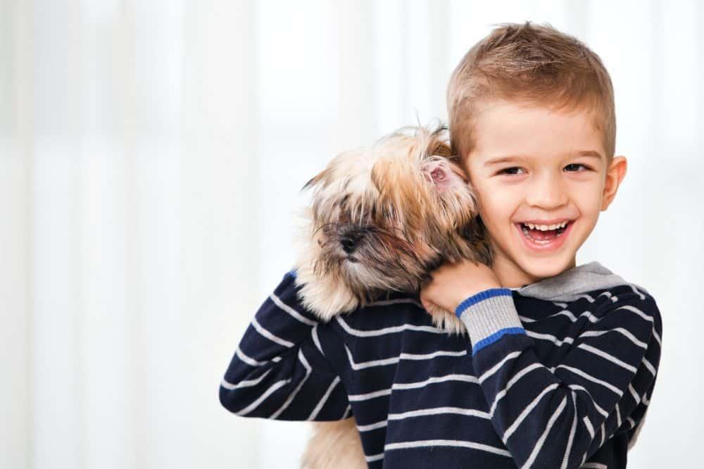 Der Havaneser ist sehr kinderlieb und ein toller Familienhund