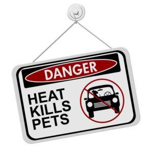 Hitze im Auto tötet!